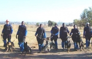 Training dog handlers and MDDs