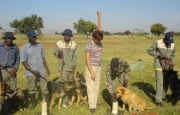 Attendees at one of MECHEM&acirc??s Dog Handler training courses.